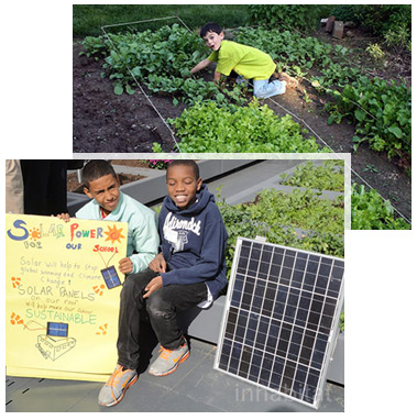 Urban Farming & Solar Power
