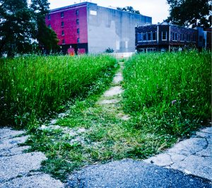 A photo of an informal footpath in Detroit.