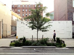 A right of way bioswale in New York City