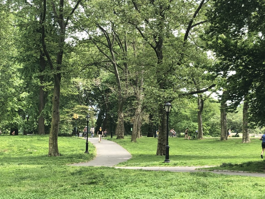 People enjoy green space in Central Park, New York City